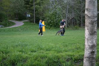 Photo: Tasha 3,5 år trener bitearbeid