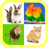 Real animal sound for kids