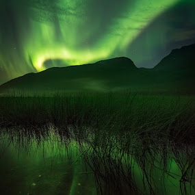 First of The Season by Jon-Eirik Boholm - Landscapes Waterscapes ( aurora borealis, northern lights, norway,  )