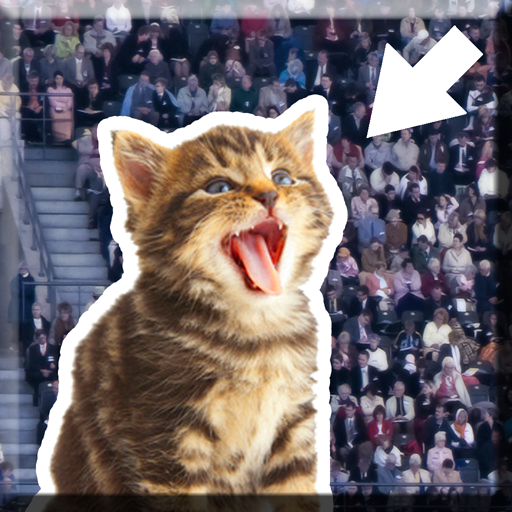Kitty in the Crowd (game)