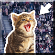 Kitty in the Crowd icon