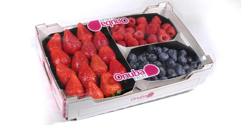 onubafruit berry mix