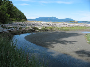 Photo: Day 4: More pictures of Spencer's Spit state park.