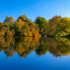 Pader Lake by Anita  Christine - Nature Up Close Trees & Bushes ( tree, park, nature, autumn, lake, garden )