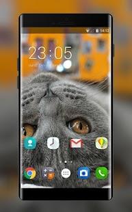 Theme for Motorola EX119 Lovely Cat Wallpaper - náhled