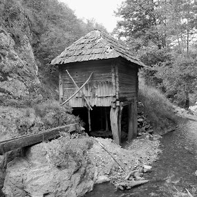 water mill by Ionela Garovat - Black & White Landscapes ( water, water mill, nature )