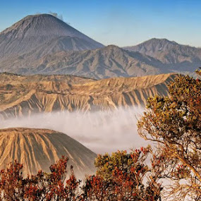 Bromo Mountain East Java by Muchamad Bashir - Landscapes Mountains & Hills