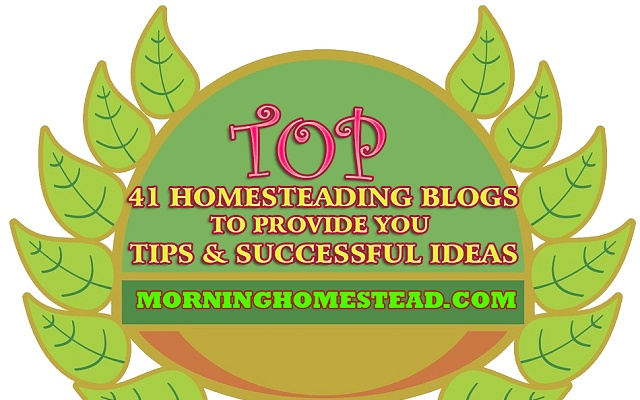 Top Homesteading Blogs