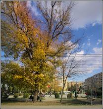 """Photo: Calea Victoriei - parcul din MR.3 - Grupul Statuar """"Horea Closca si Crisan"""" - 2017.10.13"""