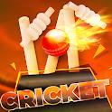 Indian Cricket League 2019: World Premier Cup icon