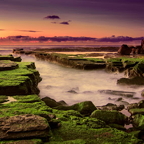 Sunrise at Turimetta by Anton Subiyanto - Landscapes Beaches ( clouds, water, beaches, sunset, australia, sunrise, landscapes, rocks, sydney )