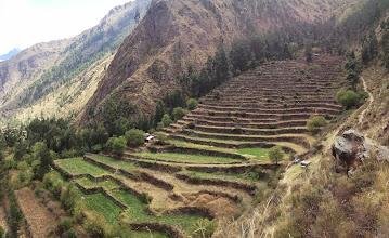 Photo: The terraced farm