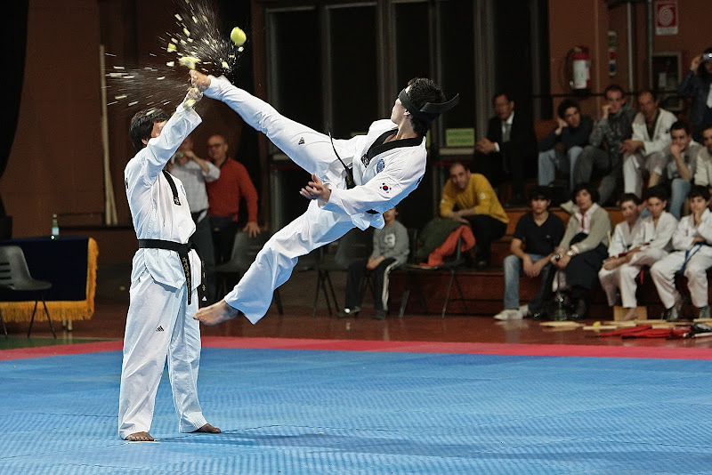 Taekwondo- Mom Dollyo Chagi di Alexx70