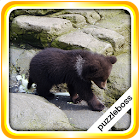 Jigsaw Puzzles: Baby Bears icon