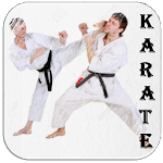 Karate Martial Arts Icon
