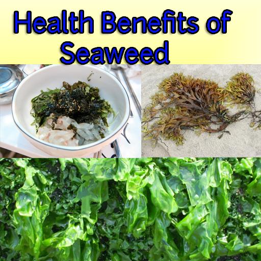 海藻对健康的好处