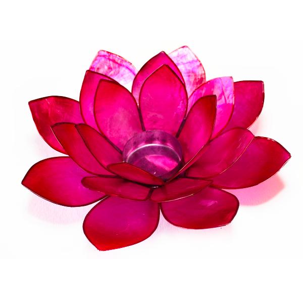 Ljuslykta, cerise lotusblomma