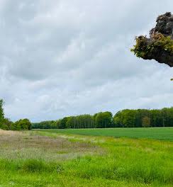 terrain à Lusigny-sur-Barse (10)