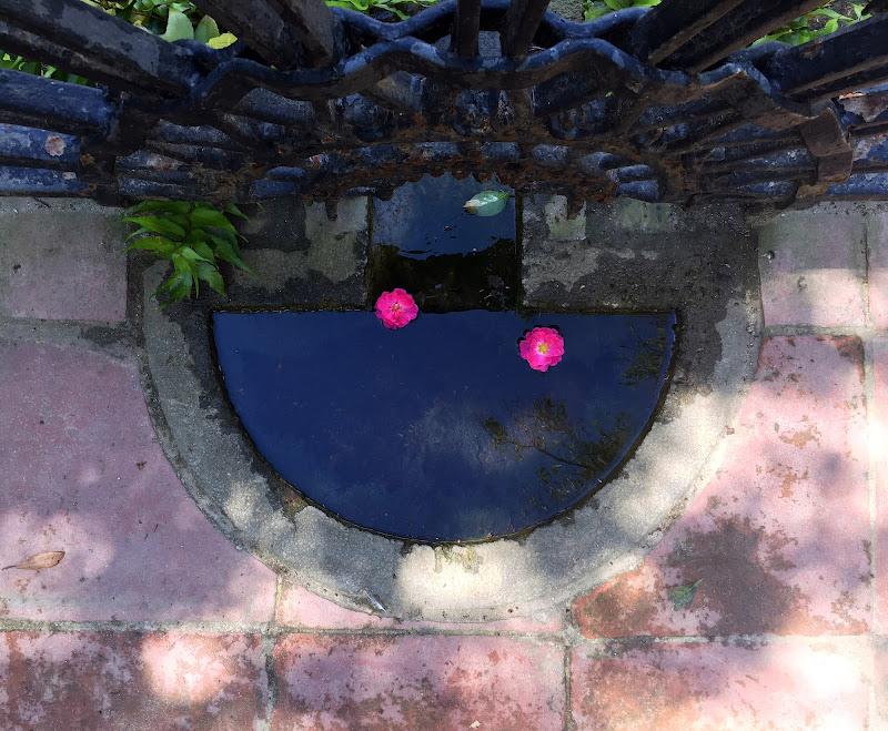 gocce di colore di Rosa0120