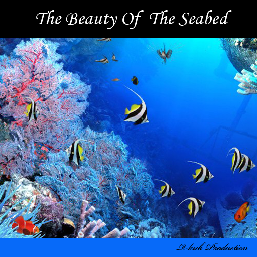The Beauty Of The Seabed