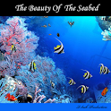 The Beauty Of The Seabed icon