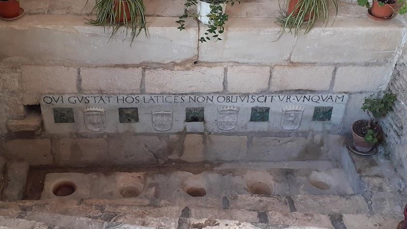 En la histórica y monumental fuente de Los Cinco Caños ya no mana el agua
