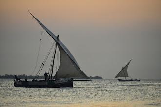 Photo: Les boutres revenant de pêche au crépuscule sont un grand classique de Zanzibar. Ils justifient quelques jours dans la vieille ville, à mon sens.