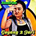 Lagu Goyang 2 Jari Remix icon