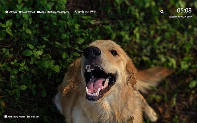 Dogs Wallpaper HD New Tab Theme©