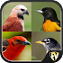 Birds Encyclopedia : Complete Reference Guide Free