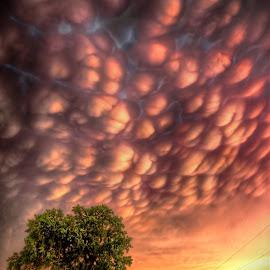 Cotton Road by DE Grabenstein - Landscapes Cloud Formations