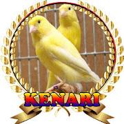 Suara Burung Kenari Juara mp3