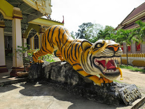 Photo: Тигр у Храма Тигра