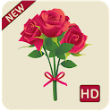 rose hd wallpapers 1080p icon