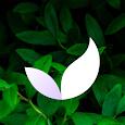 Deep Meditate: Calm, Meditation & Sleep App apk