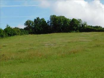 terrain à Dixmont (89)