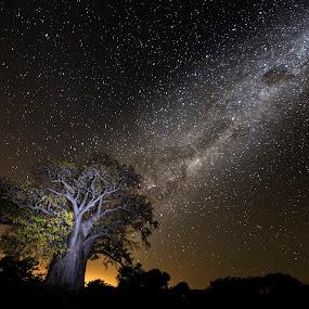 by Francois Loubser - Landscapes Starscapes