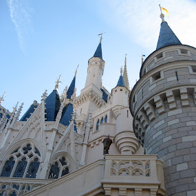 Disney Castle by Julia Nicely - Buildings & Architecture Other Exteriors ( disneyland, castle, architecture, disney, cinderella )