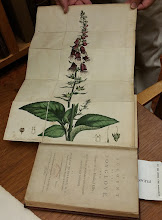 Photo: An Account of the Foxglove and Some of it's Medical Uses by William Withering published in 1785. The foxglove illustration is hand-drawn & hand-colored. Excellent quality for this book to be 230 years old!