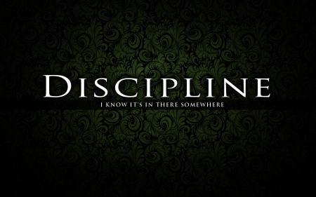 discipline-i-know-its-in-there-somewhere.jpg