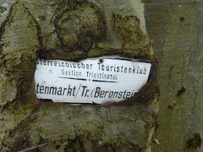 """Photo: """"Beronsteig"""" dürfte eine alte Bezeichnung für den 'Wieshofersteig' sein. Das Schild findet sich dort, wo die Wege aus Altenmarkt und Thenneberg zusammen münden, ..."""