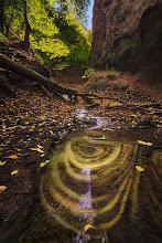 Photo: Autumns Playground