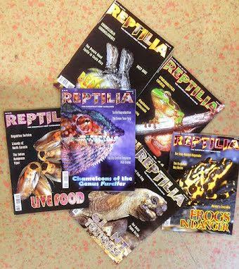 Reptiliaspecial