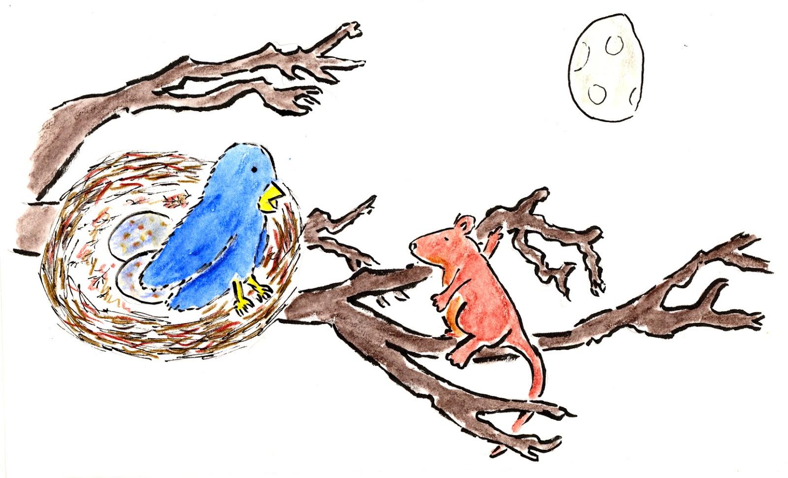 guinevere-bird.jpg