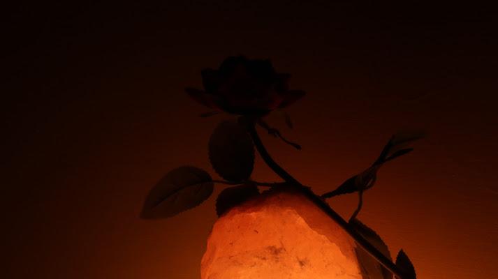 Amor aeternus. di Rebb
