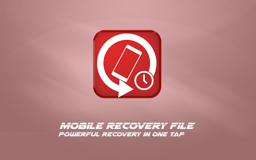 Mobile Recovery File