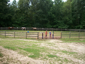 Photo: The riding ring at WoHeLo Stables