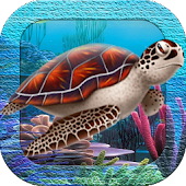 3D Sea Turtles Live Wallpaper