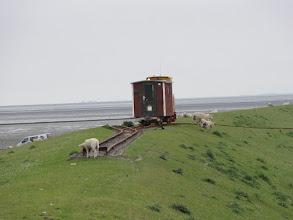 Photo: Die Lore kommt von Nordstrandischmoor nach Lüttmoorsiel.