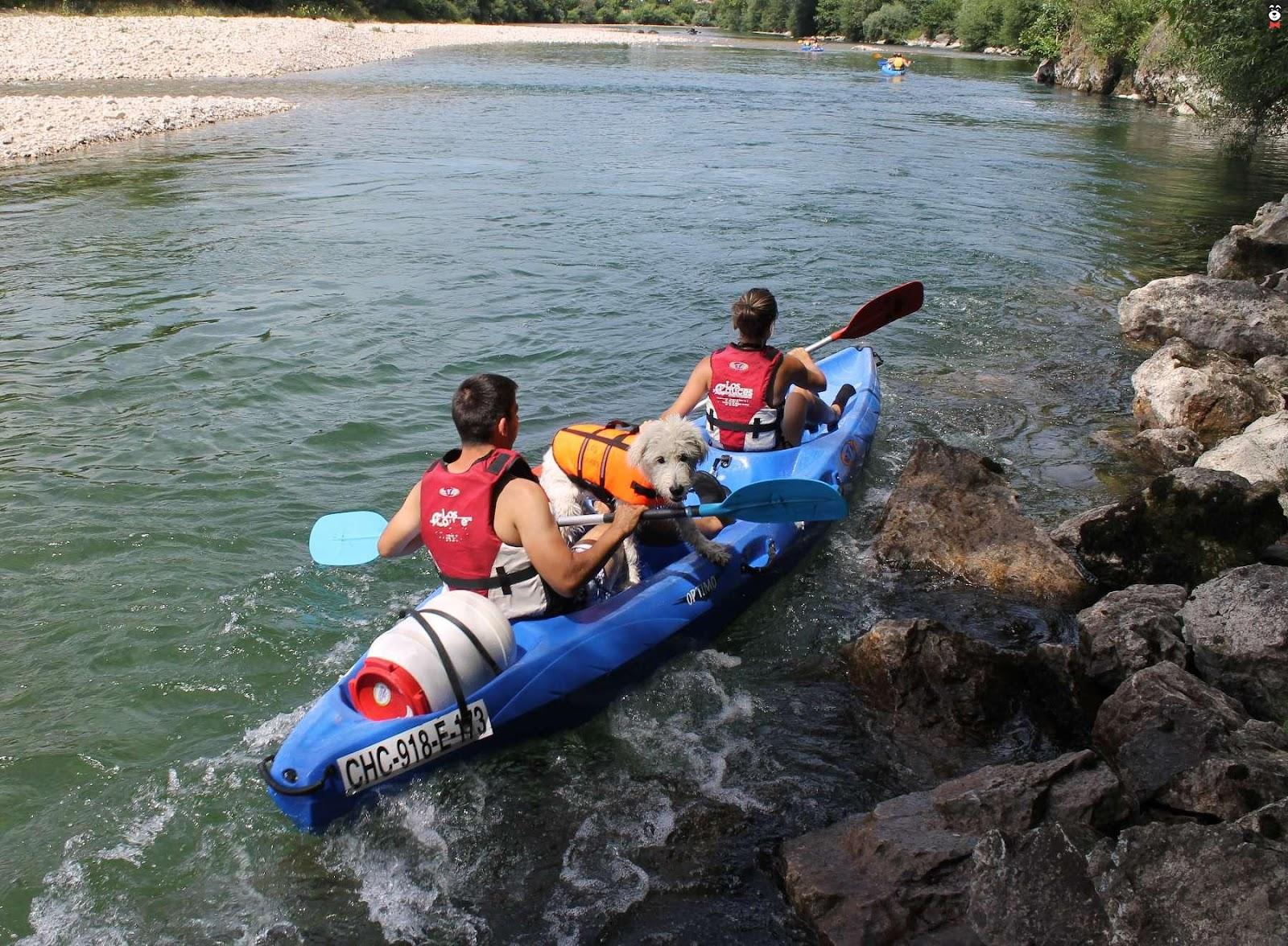 Descenso del Sella en canoa con perro